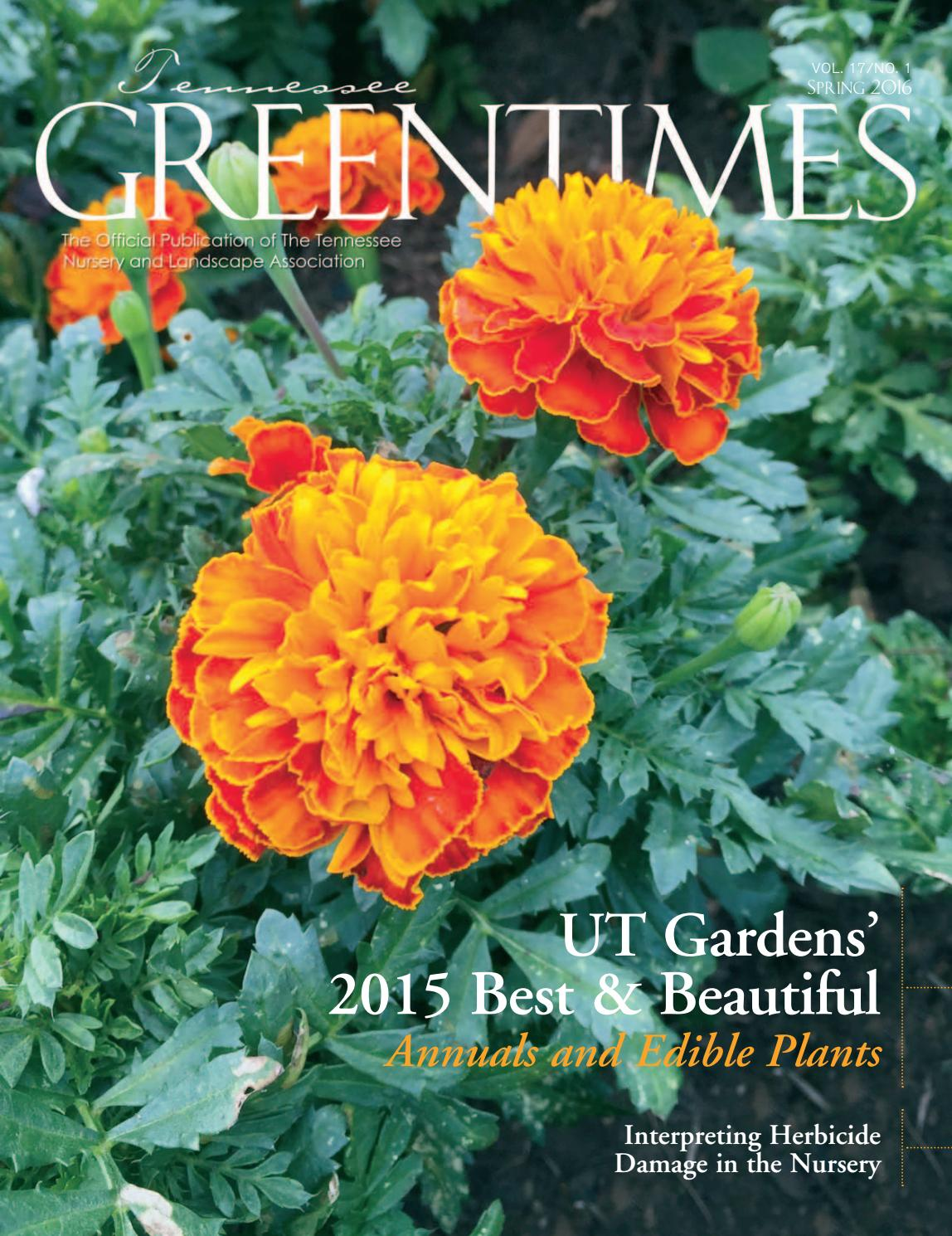 Tennessee Greentimes Spring 2016 By Leadingedgepubs Issuu