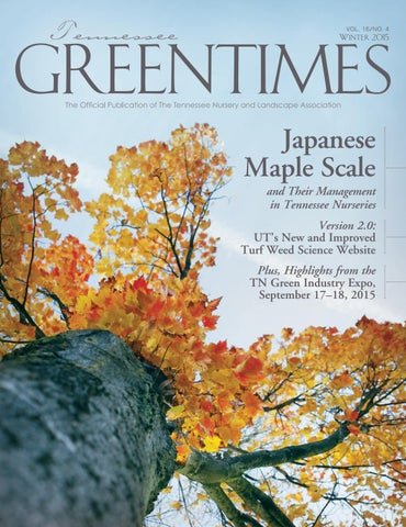 Tennessee Greentimes Winter 2017 By Leadingedgepubs Issuu