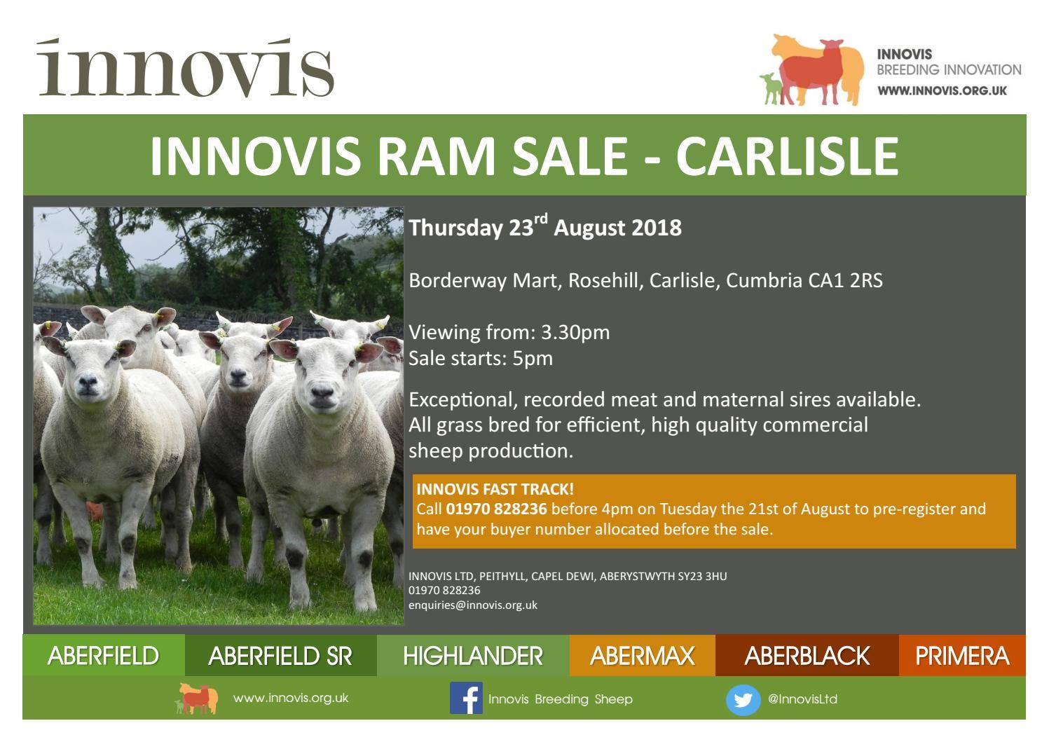 Innovis Ram sale 230818 by Harrison & Hetherington - issuu