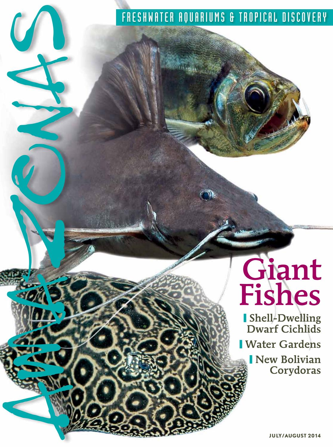 """Spawning mops 3/"""" floating X 3 for egg layers live bearers killifish"""