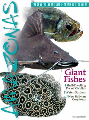 Pet Supplies Humble Aquarium Clean Siphon Vacuum 24hr Rapid Dispatch Uk Item More Discounts Surprises