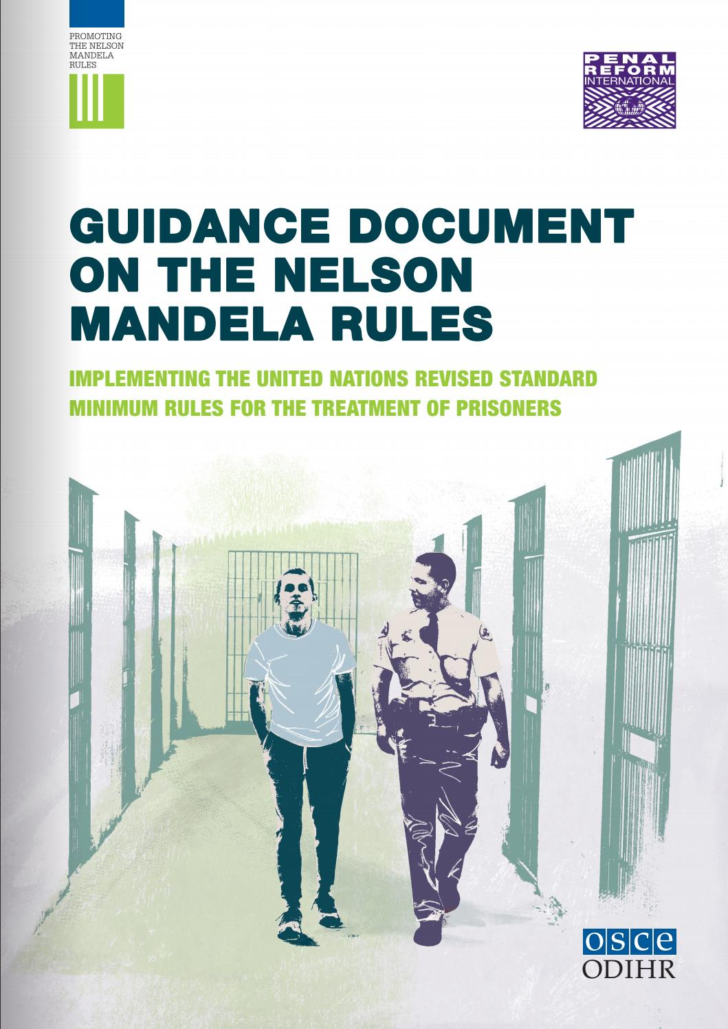 Guidance Document on the Nelson Mandela Rules (186 pages) by