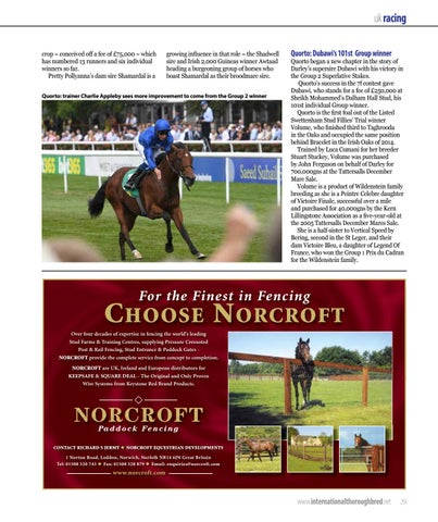 Page 29 of British and Irish juvenile racing