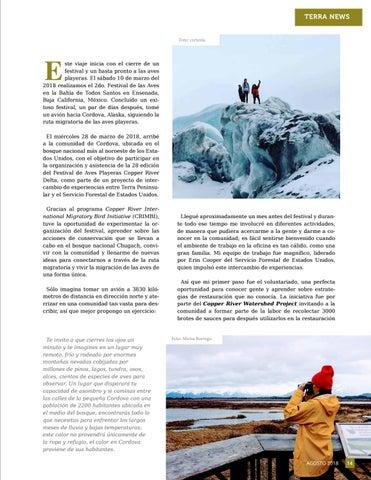 Page 15 of Conectar más allá de la ruta migratoria, mi experiencia en Cordova, Alaska