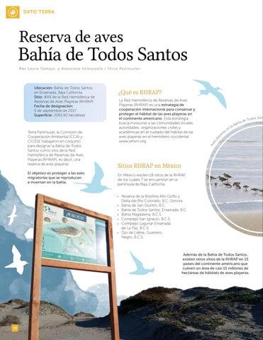 Page 20 of Reserva de aves Bahía de Todos Santos