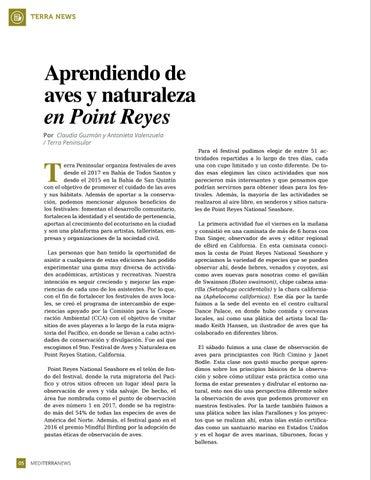 Page 6 of Aprendiendo de aves y naturaleza en Point Reyes