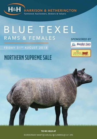 Carlisle Blue Texel Sheep Show & Sale 310818 by Harrison