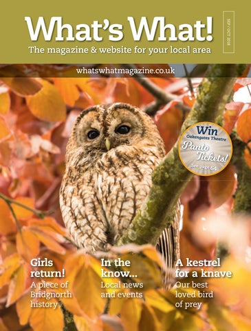 ff6995471476 What s What! magazine - Sep Oct issue by What s What Magazine - issuu