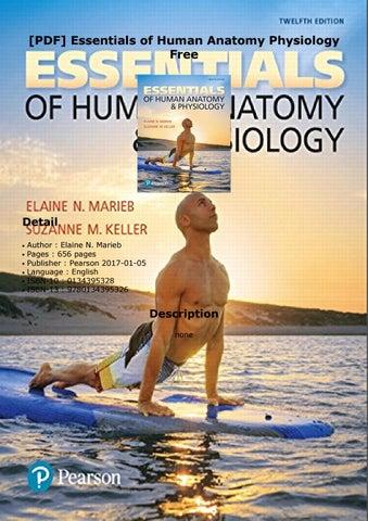 PDF] Essentials of Human Anatomy Physiology Free by GwenMorales - issuu