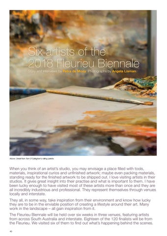 Page 42 of Six Artists of the 2018 Fleurieu Biennale