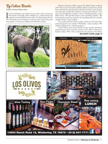 Page 11 of The Shady Llama