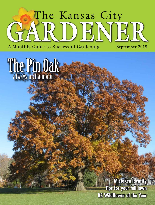Kcg 09sep18 By The Kansas City Gardener