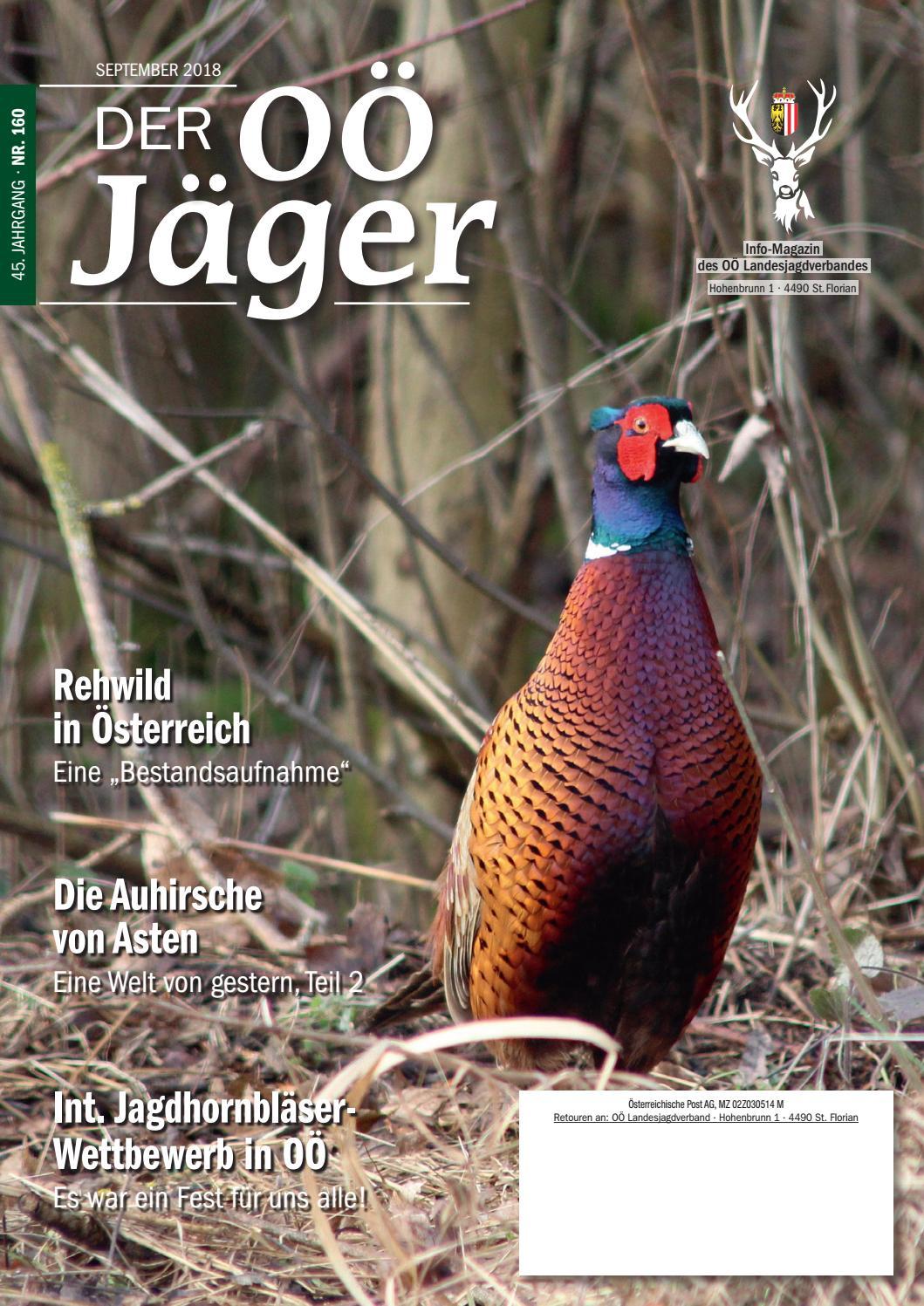 Jäger & Waidmann Taschenmesser StäRkung Von Sehnen Und Knochen Altes Jagdmesser Inkl