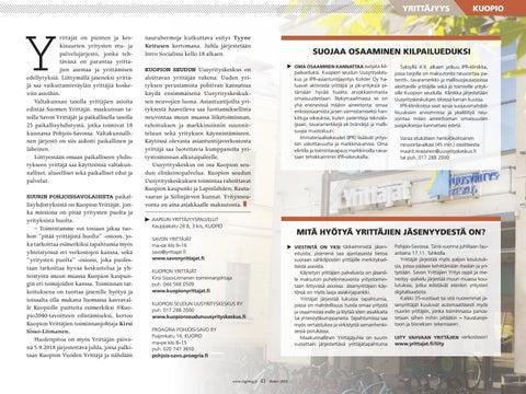 Page 41 of Yrittäjyys