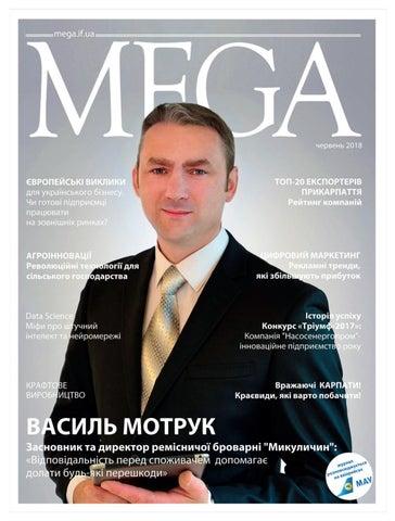 Випуск №17 by Mega - issuu 355176e4665a8