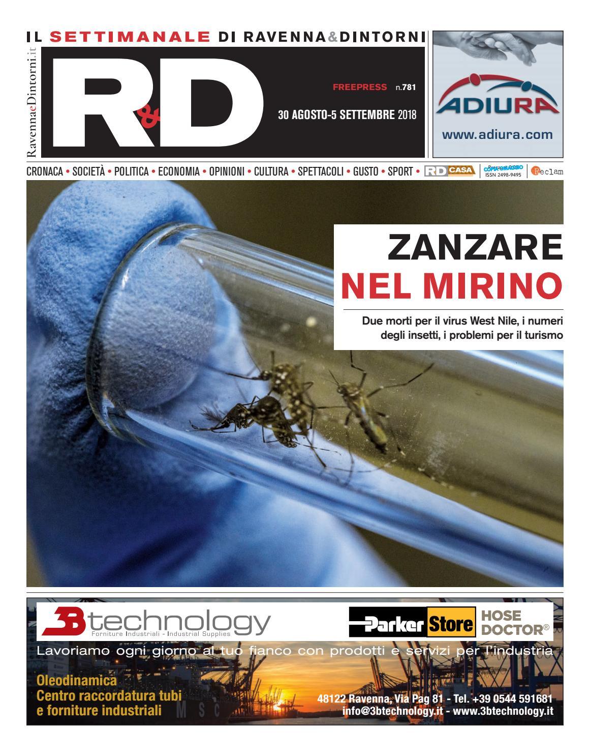 Insetti Bianchi Sul Parquet rd 30 08 18 by reclam edizioni e comunicazione - issuu