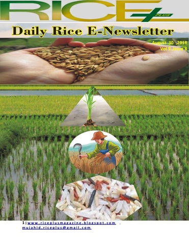 30th August,2018 daily global regional local rice e-newsletter