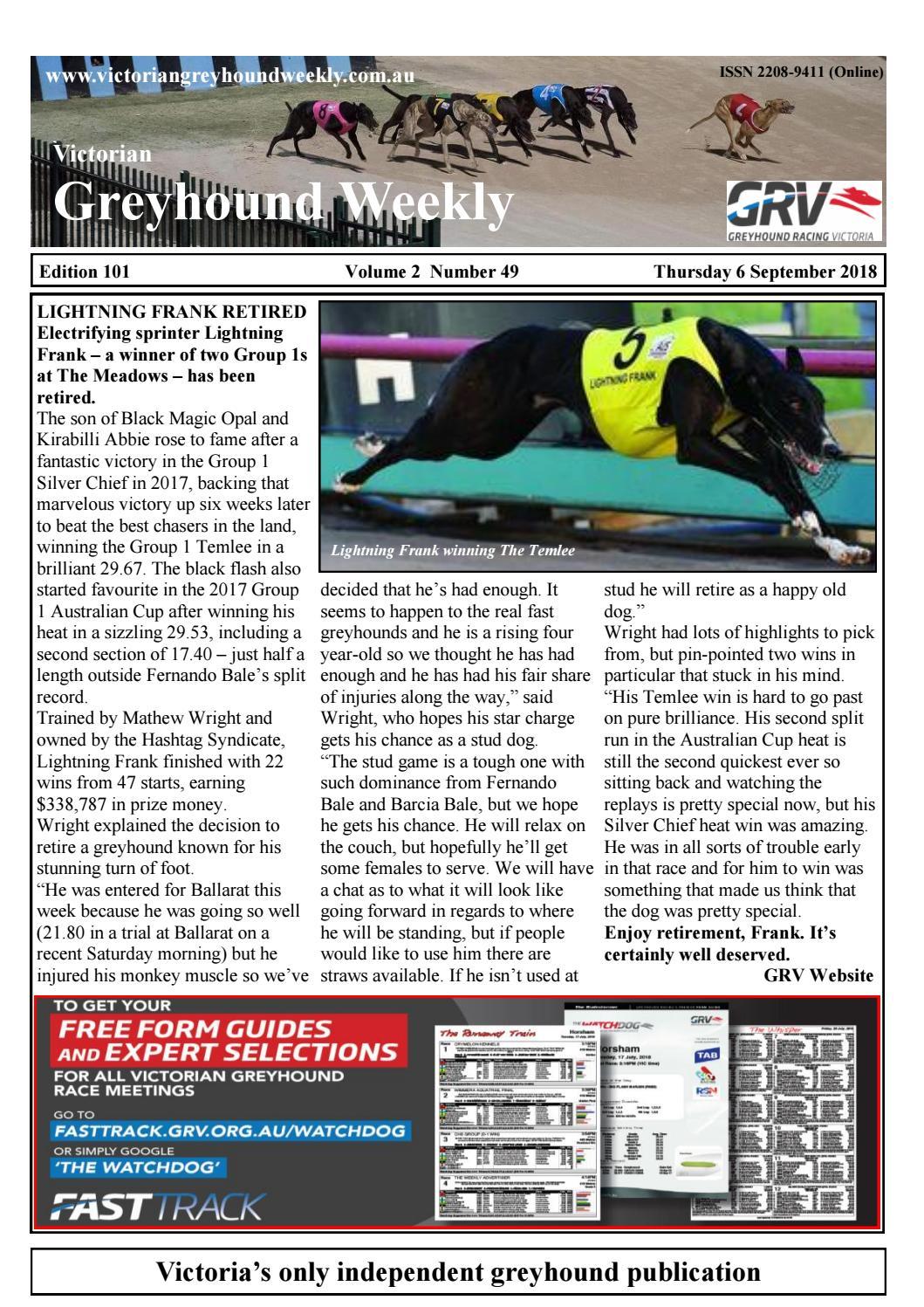 Greyhound Weekly by The Waterline News - issuu