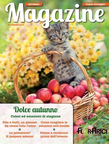 Un Erba Con Fiori Bianchi E Frutto Nero.Florarici Magazine Autunno 2018 By Paolo Arici Issuu