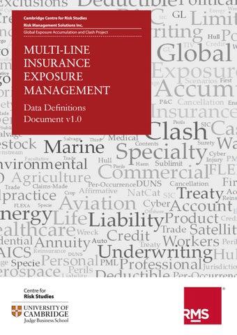 Multi-Line Insurance Exposure Management Data Definitions Document