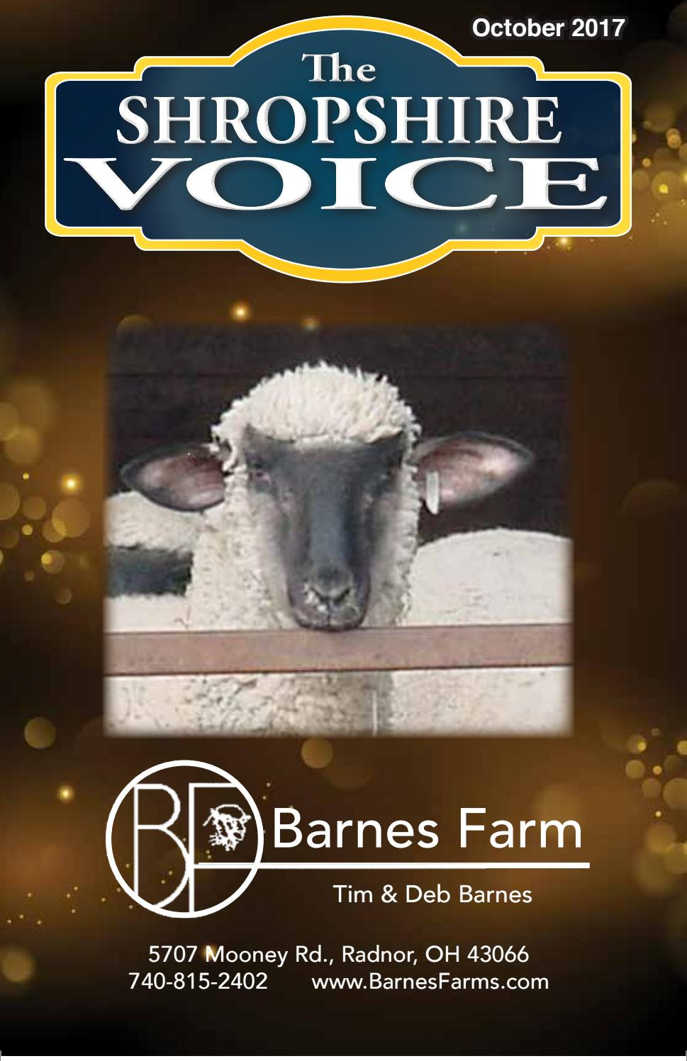 SUFFOLK SHEEP RAM LAMB WESTERN 4H FFA BELT BUCKLE USA