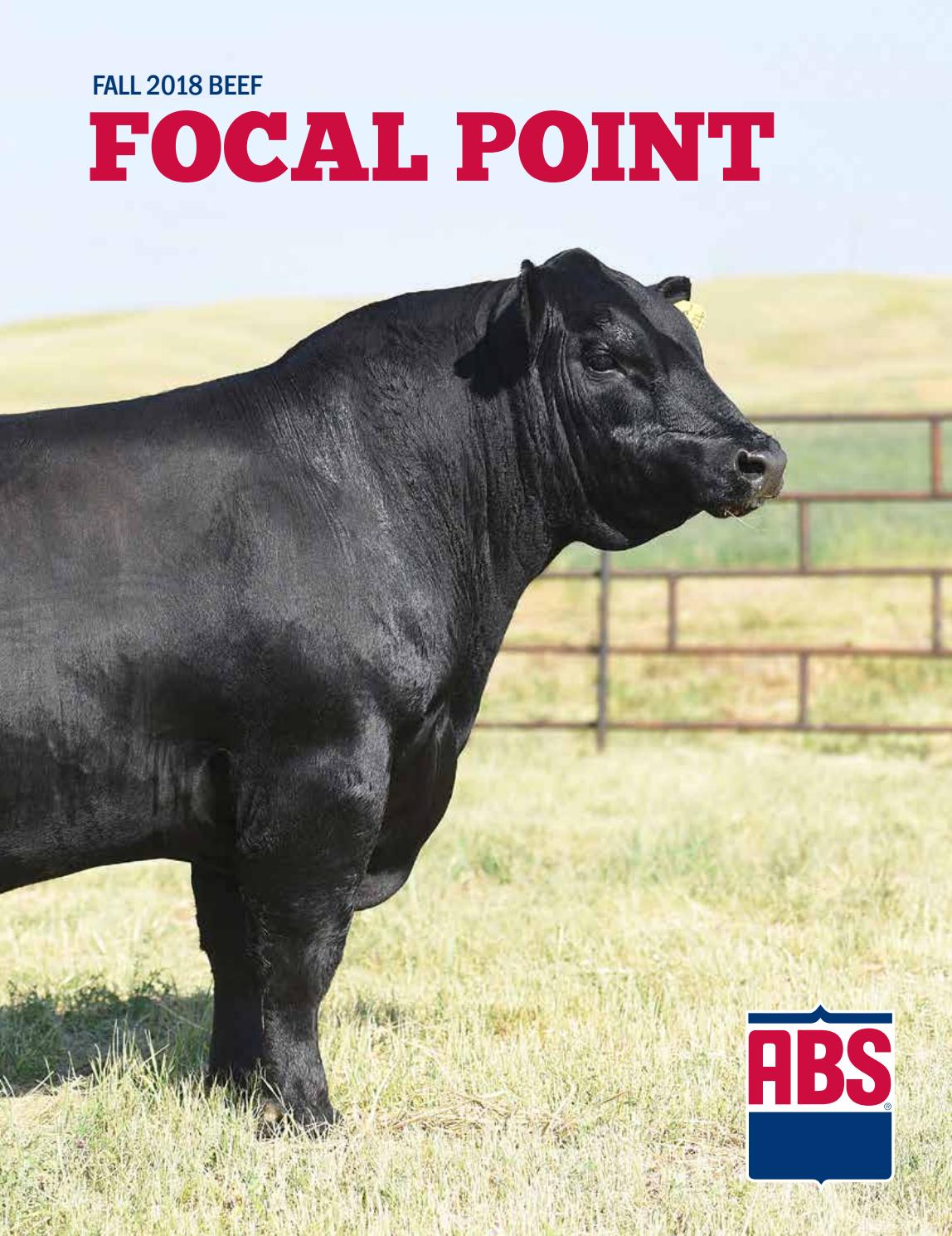 Fall 2018 Beef Focal Point by ABS Global, Inc  - issuu