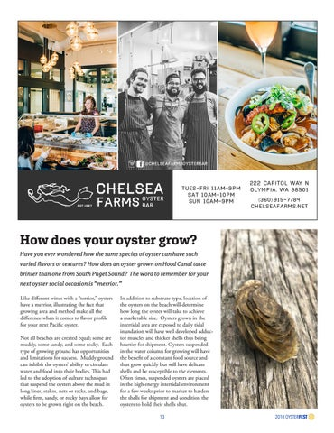 Page 13 of How Does your Oyster Grow?