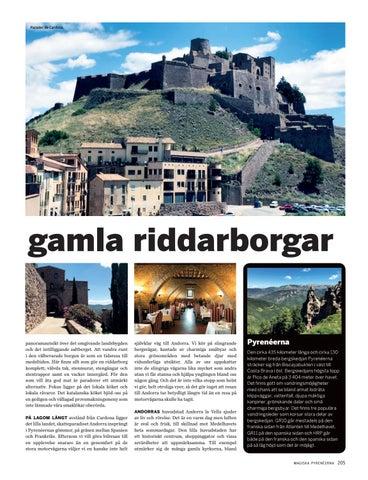 Page 205 of Magiska Pyrenéerna