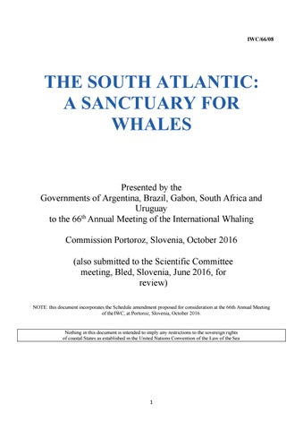 Sailing Through the Centuries Print 1963 American Whaler Hunting Sperm Whales