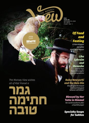 Issue 165 by The Monsey View - issuu