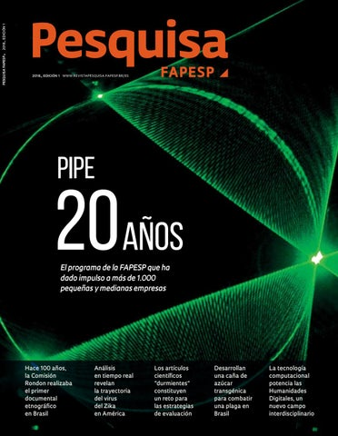 Pipe 20 Aos By Pesquisa Fapesp Issuu