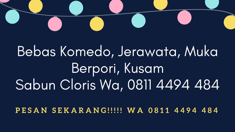 Wa 0811 4459 913 Agen Sabun Cloris Buat Perawatan Muka Pria By Wajah Di Makassar 08114459913 Issuu