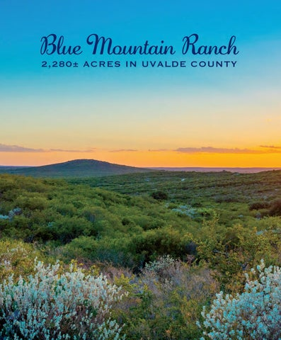 Page 101 of Blue Mountain Ranch