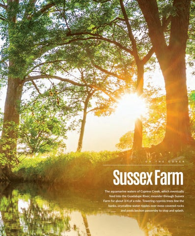 Page 3 of Sussex Farm