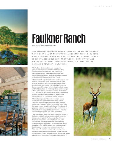 Page 65 of Faulkner Ranch