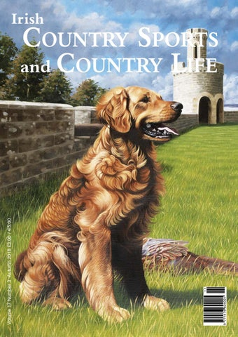 4015828e9573d Irish Country Sports and Country Life - Autumn 2018 by Bluegator ...