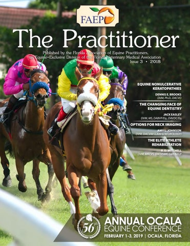 Practitioner Issue 3, 2018 by FVMA - issuu