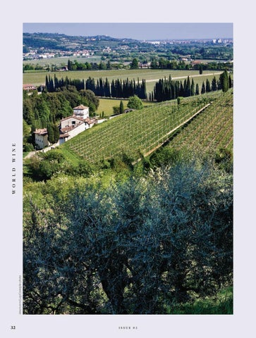 Page 32 of Valpolicella: Valleys of red