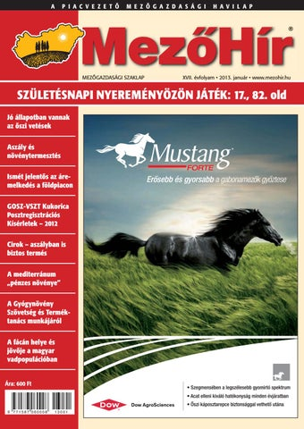 Mezőhír 2013. Január by Horizont Média Kft. - issuu bc464bb116