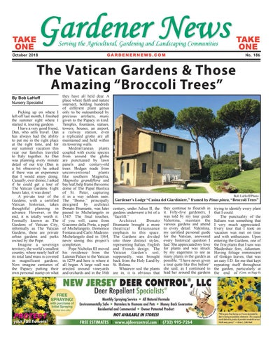 Gardener News October 2018 by Gardener News issuu