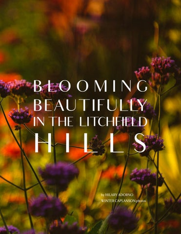 Page 131 of White Flower Farm: Blooming Beautifully in the Litchfield Hills