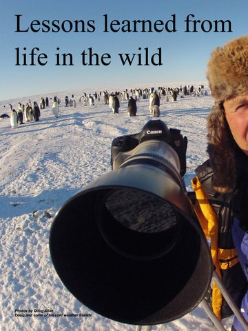 Page 44 of Wildlife cameraman Doug Allan reveals secrets of life behind the lens.