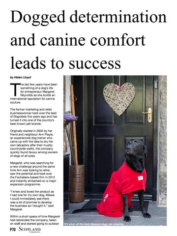 Page 70 of Dog robes - the stylish and practical way to care for your dog