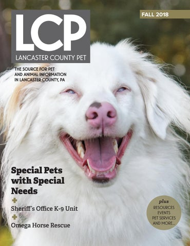 Lancaster County Pet Fall 2018 by Lancaster County Pet - issuu