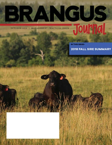 new products 304de 18315 February 2019 Hereford World by American Hereford Association and Hereford  World - issuu