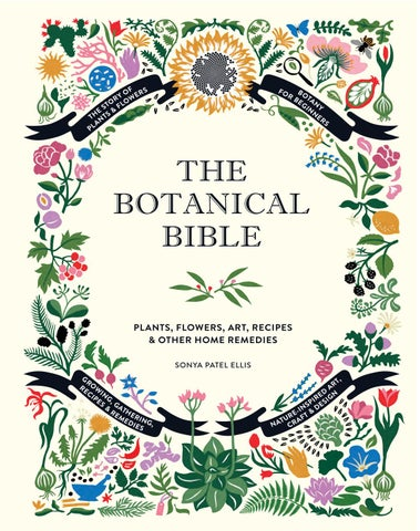 THE BOTANICAL BIBLE PREVIEW by abotanicalworld - issuu