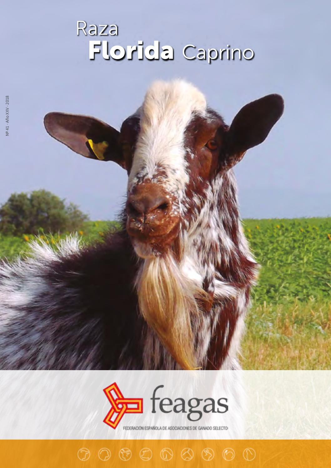 Collar de divulgación de ganado Etiqueta Vegano