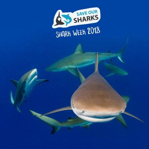 aab4af676 Save Our Sharks - Shark Week 2018