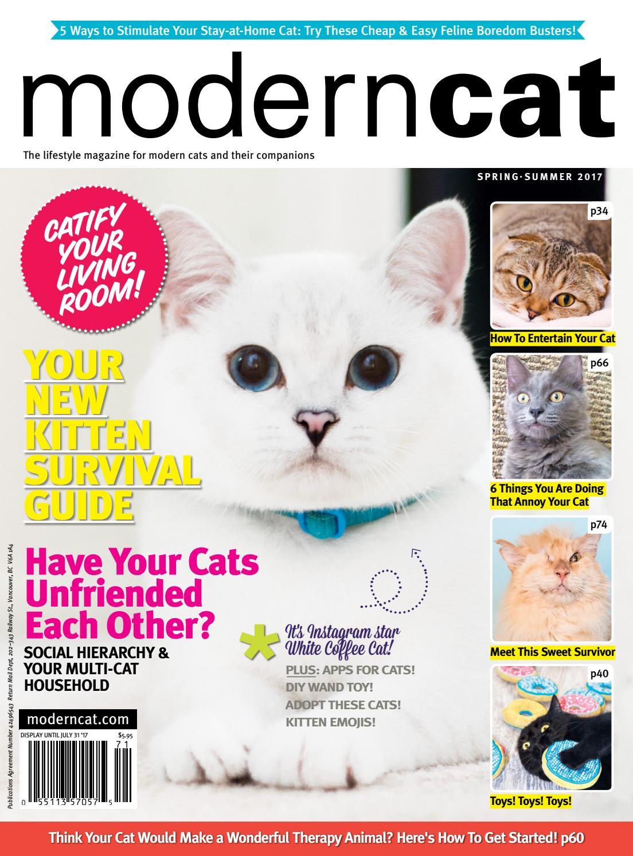 a144e748124 Modern Cat Spring Summer 2017 by Modern Cat Magazine - issuu
