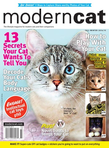 Calico Cat With Interesting Gps >> Modern Cat Fall Winter 2014 By Modern Cat Magazine Issuu